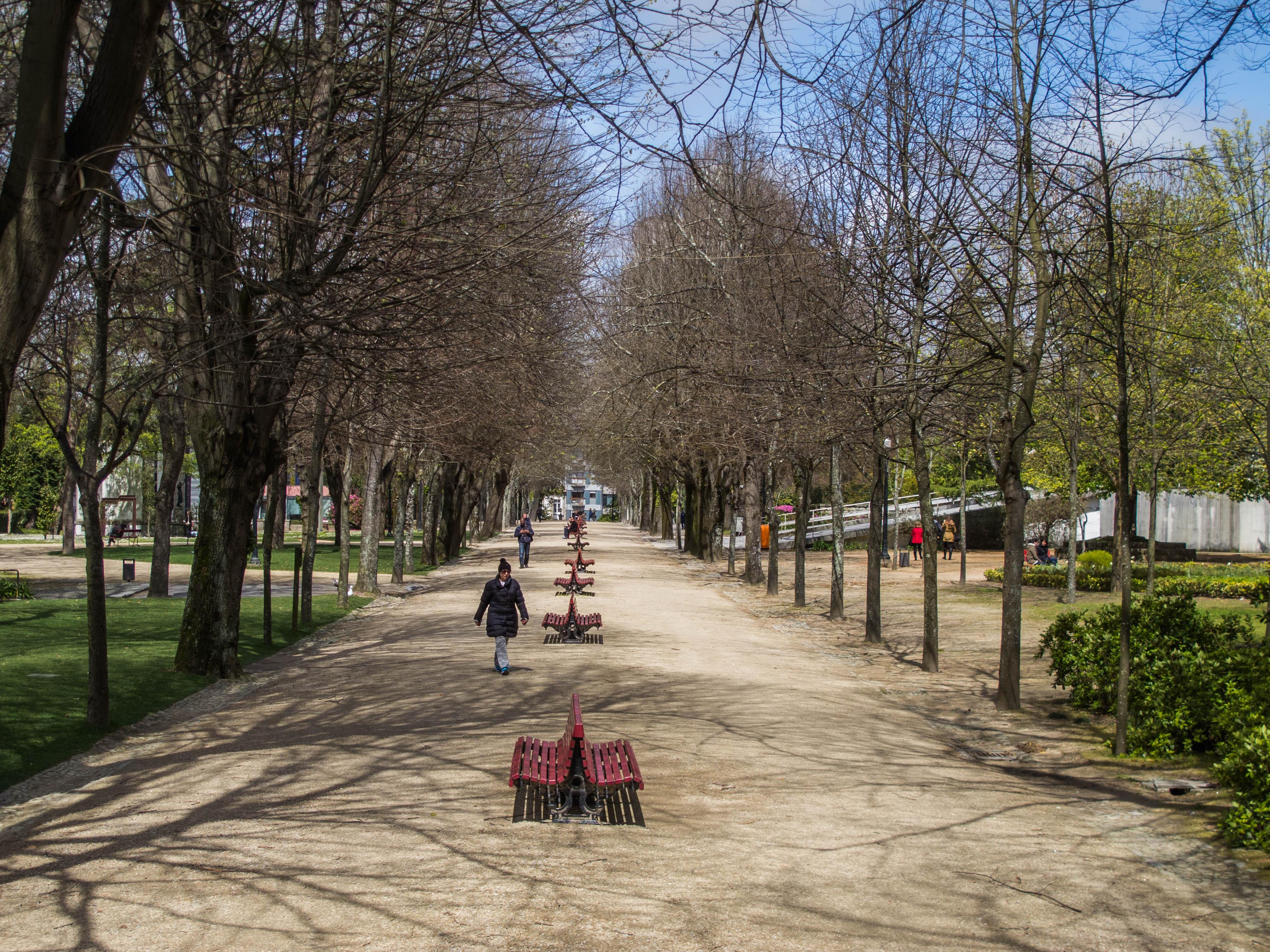 A Avenidas das Tílias no Palácio de Cristal